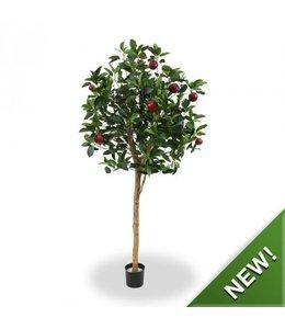 Appelboom Deluxe 195 cm