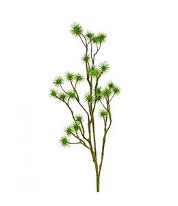 Distel tak 80 cm groen