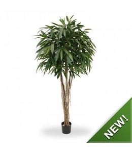 Longifolia Ball Deluxe 180cm