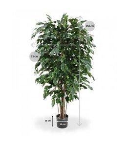 Ficus Exotica Deluxe 150cm groen