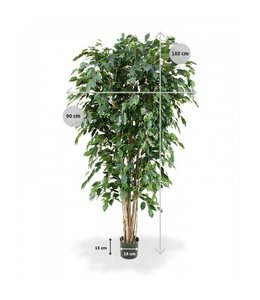 Ficus Exotica Deluxe 180cm groen
