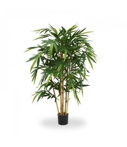 Bamboe 125cm