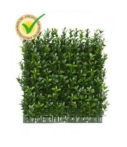 Buxus mat x140 UV