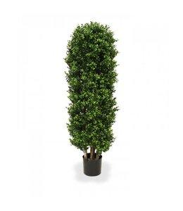 Buxus Kolom Deluxe 125 cm