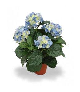 Hortensia Deluxe 45 cm blauw