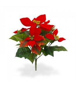 Poinsettia boeket x5 rood
