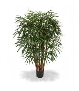 Raphis Palm XL Deluxe 130 cm