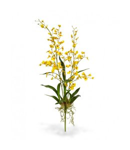 Oncidium deluxe orchidee kunstboeket