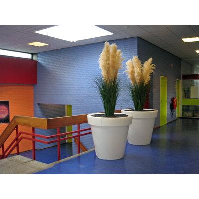 Ichtus College Kampen