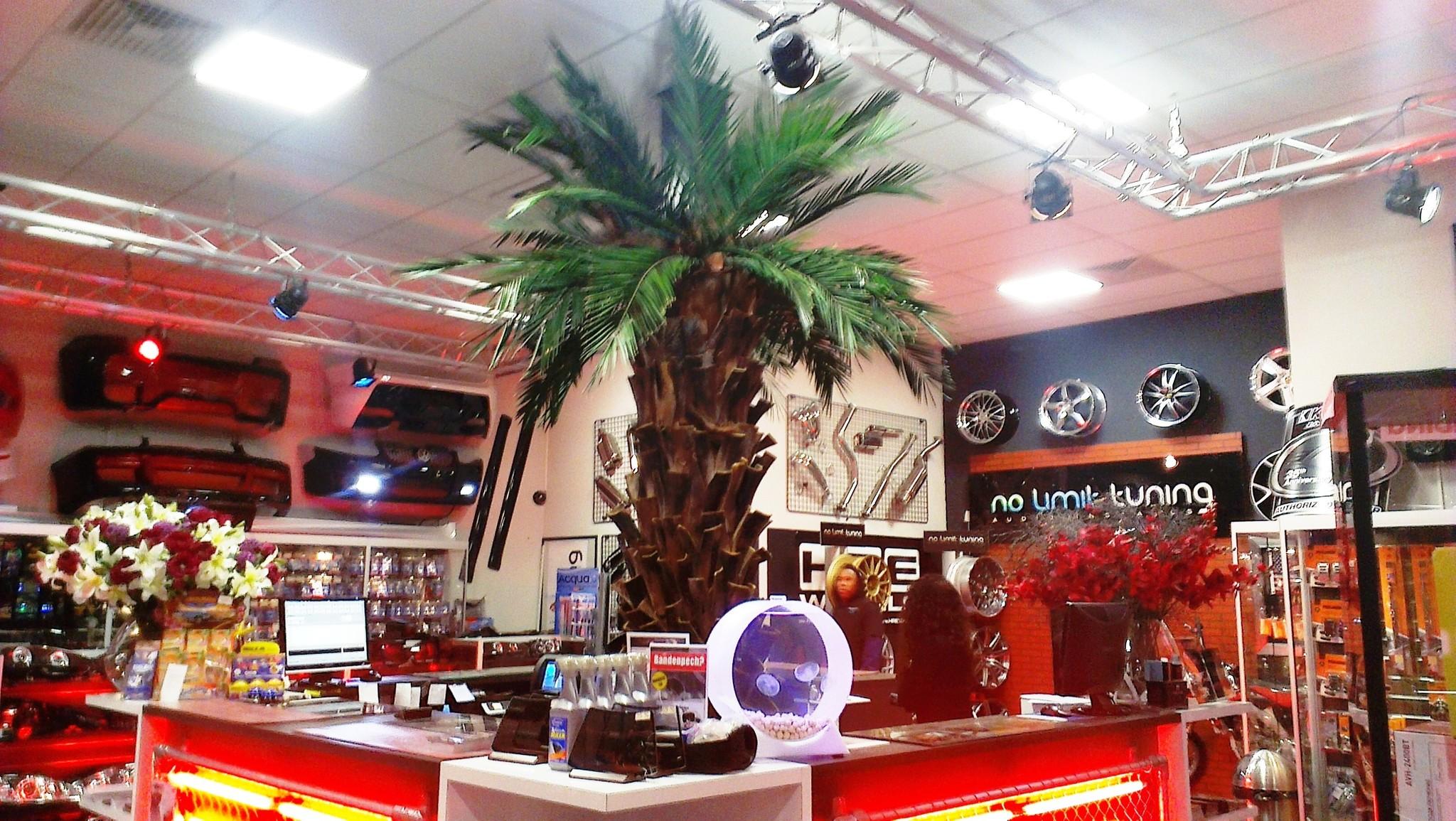 Kunstplanten.nl project palmdecoratie op draagbalk No Limits Amsterdam