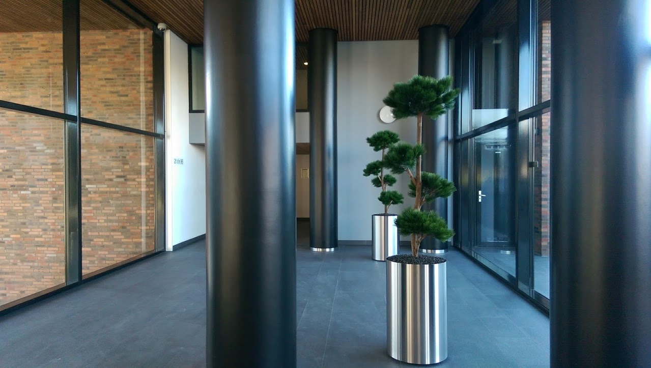 Kunstplanten.nl project Pinus Podocarpa VvE Zoetermeer