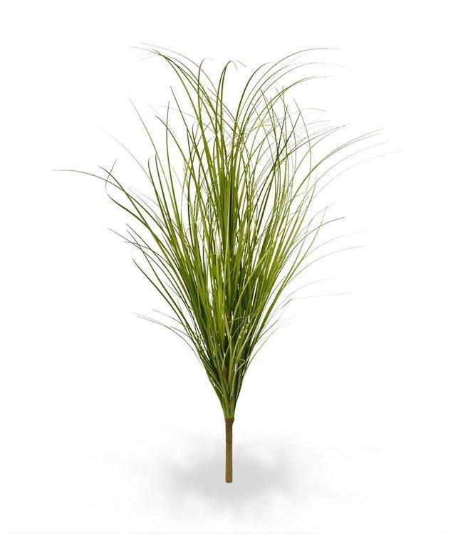 Grasboeket Wide groen 60 cm