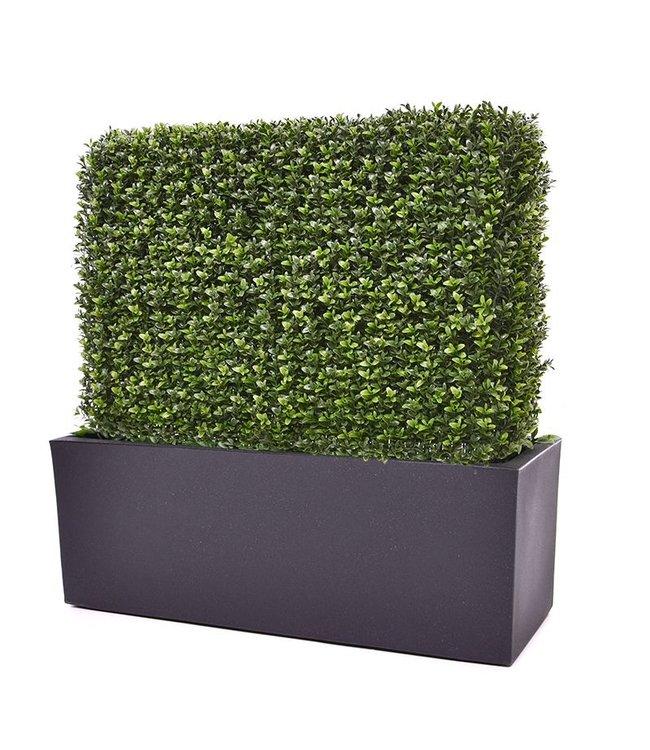Buxus Heg 80 x 25 x 56 cm UV