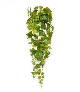 Pothos hangplant 90 cm bont