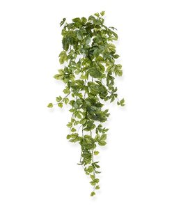 Maple hangplant 90 cm groen