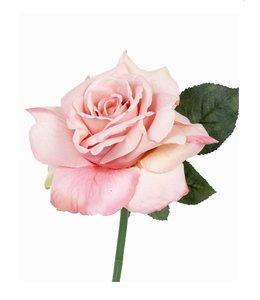 Roos Quiannie 30 cm Zalmroze