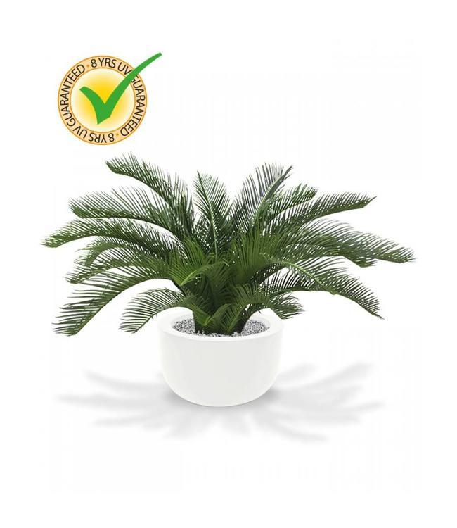 Cycas Palm 60 cm Deluxe UV