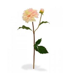 Dahlia tak x2 50 cm roze