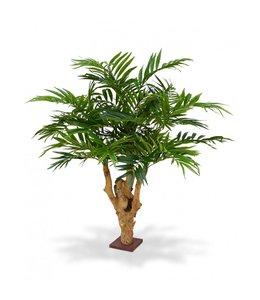 Parlour Palm 95 cm op voet