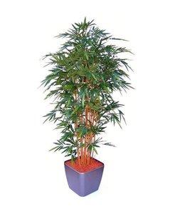 Bamboe Deluxe 210cm