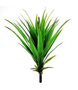 Yucca boeket 50cm