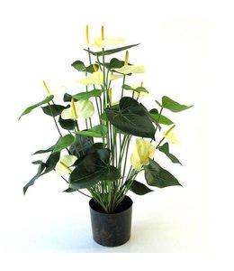 Anthurium de luxe 80 cm crème