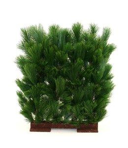 Pinus Heg Deluxe 80x80cm