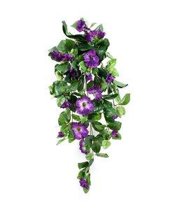 Hangpetunia De luxe paars 80 cm