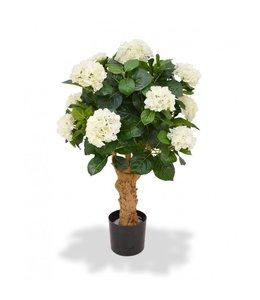 Hortensia Deluxe op stam 90 cm crème
