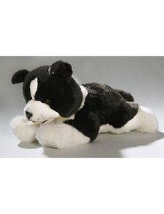 Border Collie Pup 29cm