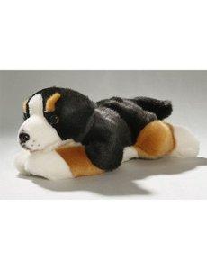 Berner Sennen Pup 29cm