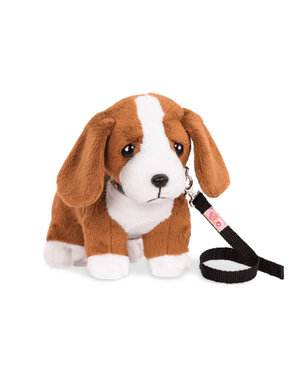 Basset Pup