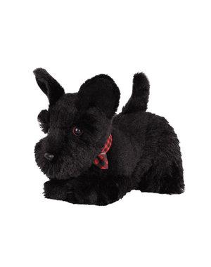 Schotse Terriër Pup