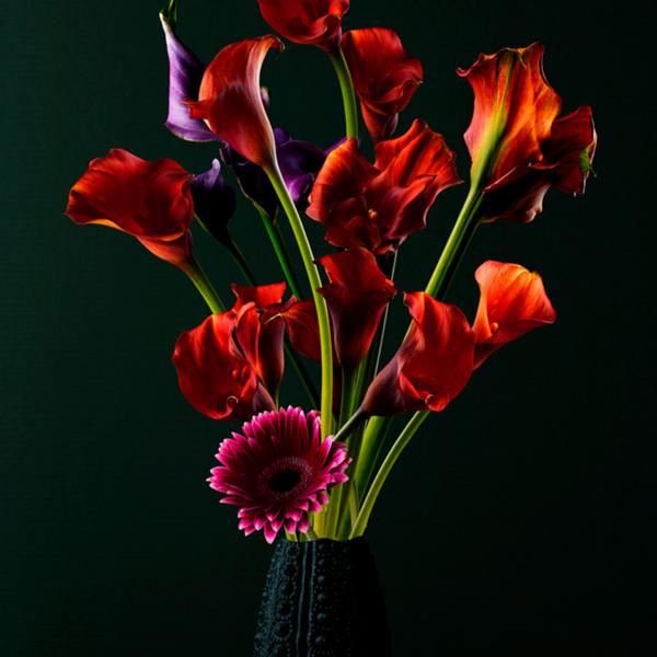 WANDKRAFT Reds, red calyx flowers