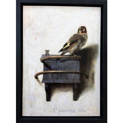 Goldfinch im Rahmen