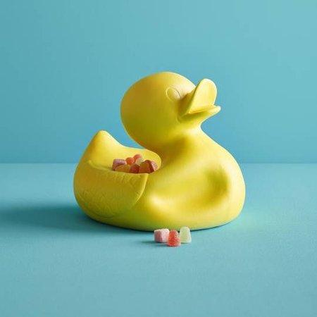 Großer Herr Duck