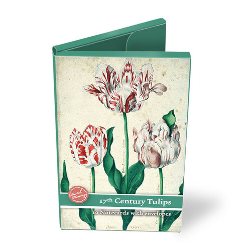 Folder with cards Tulips