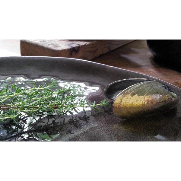 Das Muschelbesteck aus Zeeland