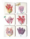 Coasters - Tulips illustrations by Jakob Marrel