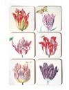 Dessous de verre - Illustrations de tulipes de Jakob Marrel