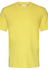 armedangels Armedangels, Jaante, lemon yellow, L