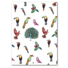 Studio Wilderness Tropical Birds