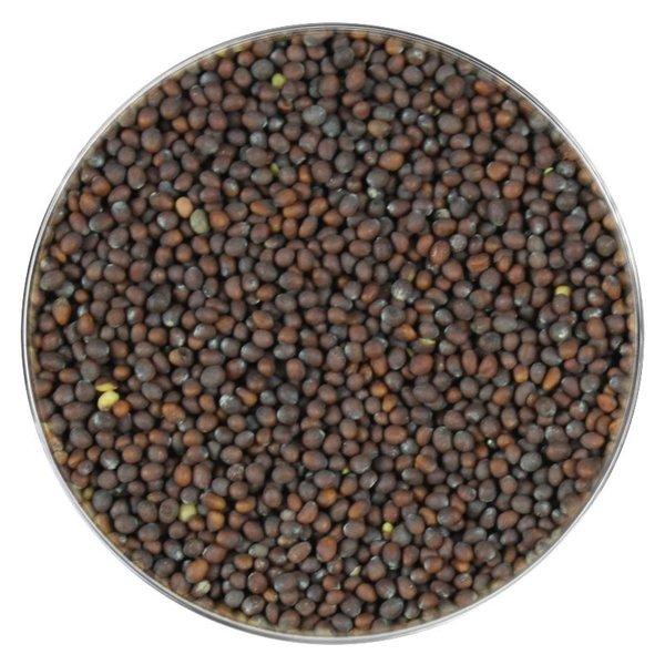 KRUIDEN-SPECERIJEN.NL Mosterdzaad bruin (Brassica Juncea)