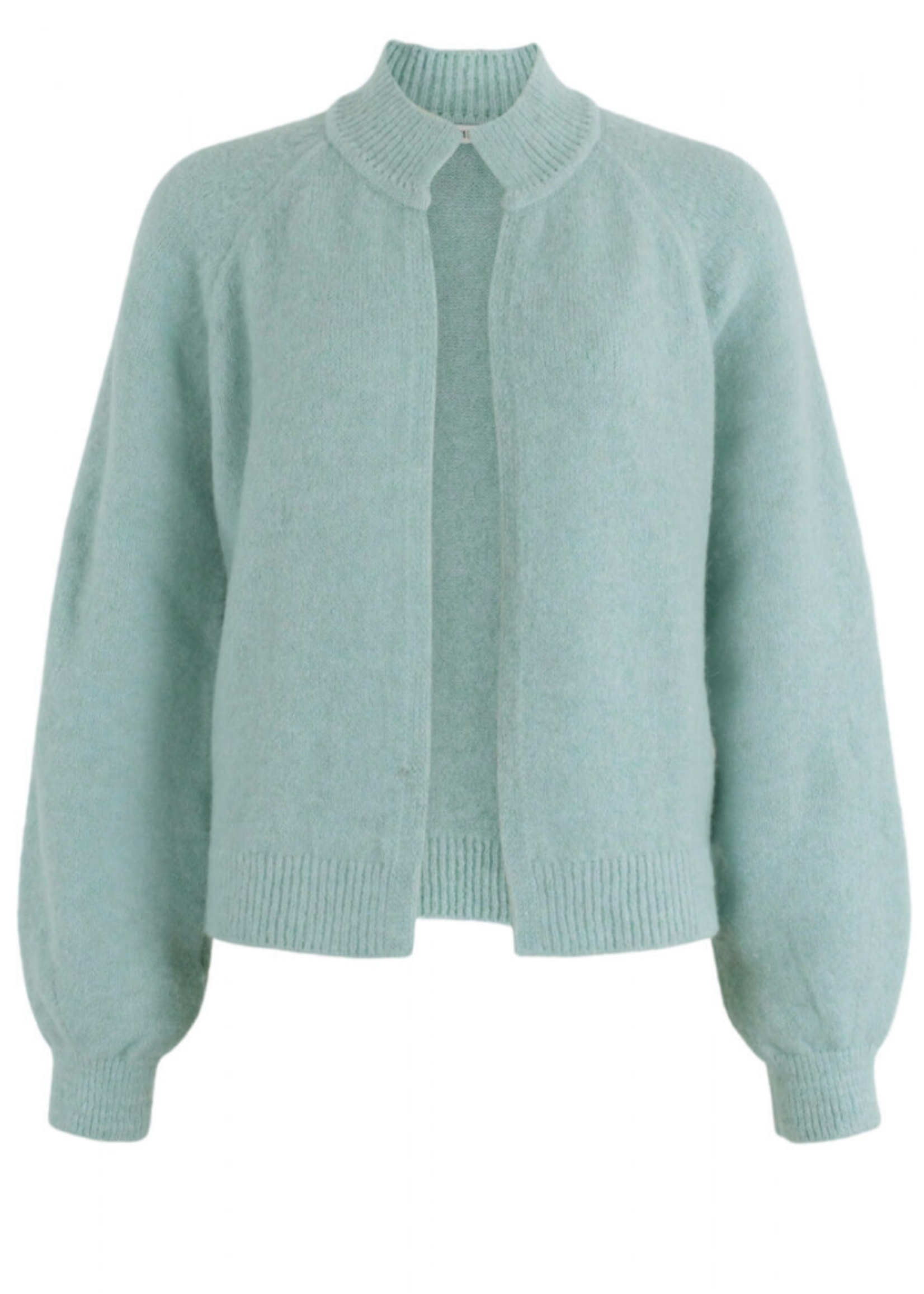 Anna Vest Lange Mouw Mint Solid