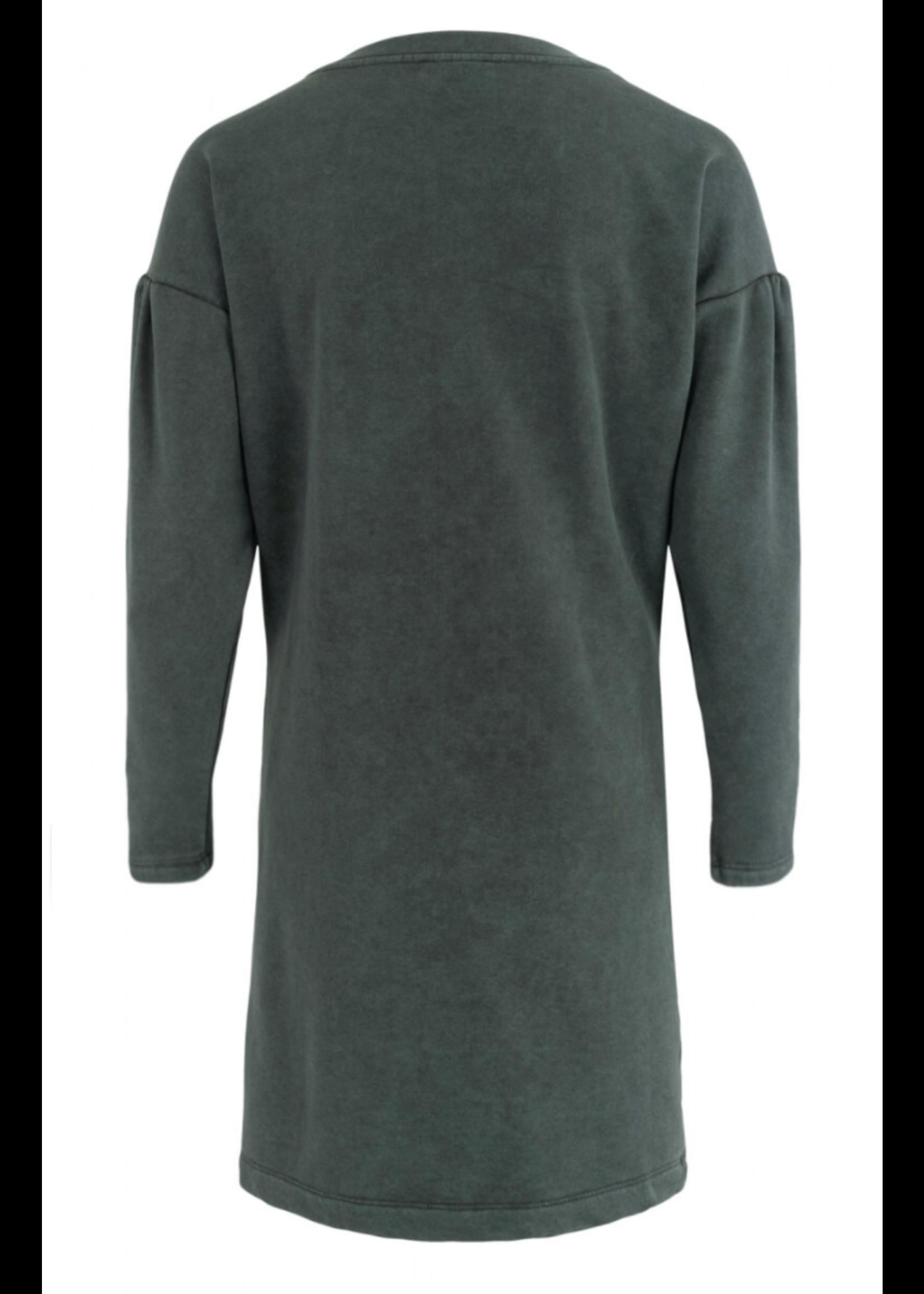 Anna Jurk lange mouw Grey Green Solid