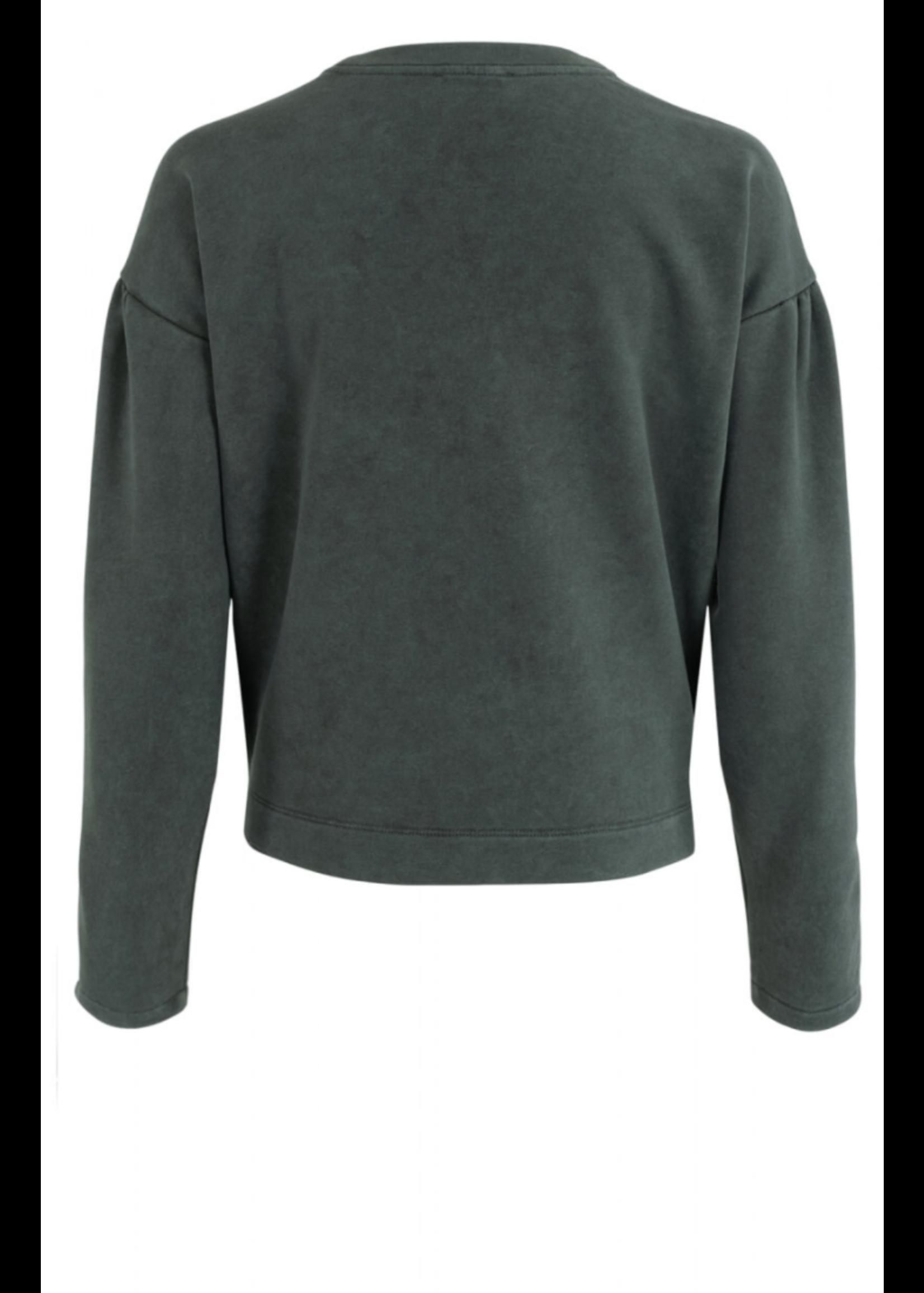 Anna Sweatshirt Lange Mouw Grey Green Solid