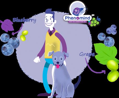 PawMall Phenomind