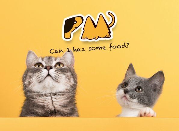 Nuttige informatie over katten