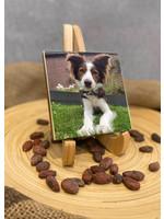 Chocoladetablet met print