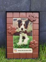 XXL chocolade met print (1.2 KG) - Hondenpootjes